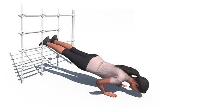 Decline Push Up Net